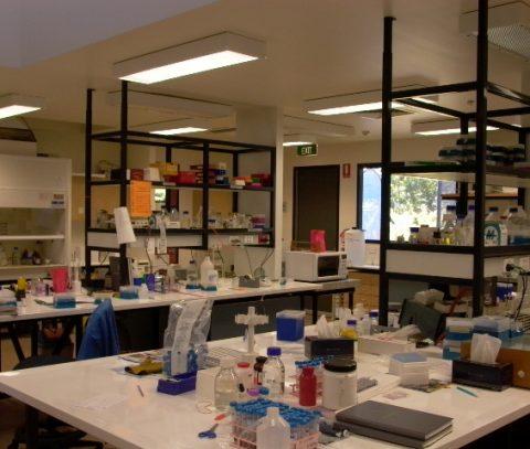 CSIRO 2